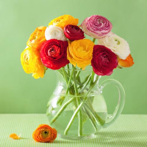 Bloemen met baking soda