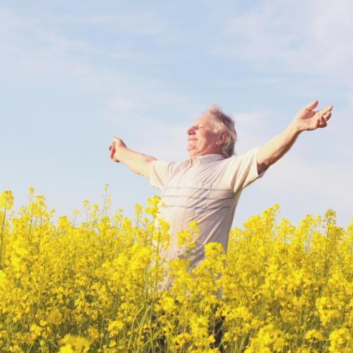 Natuurlijk daglicht maakt mensen gelukkiger