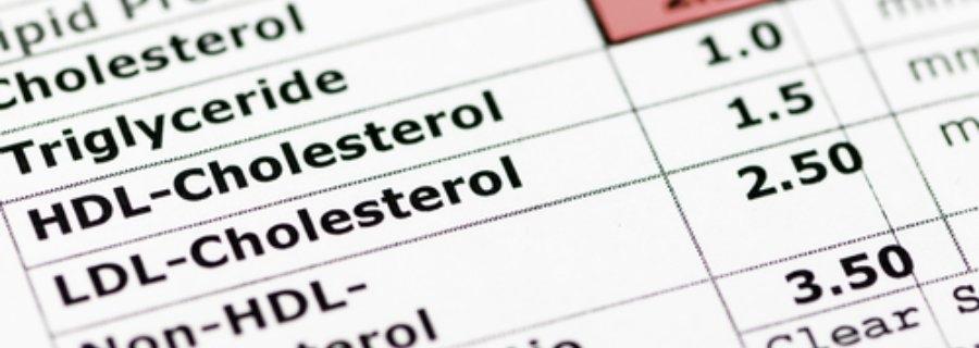 Gezondeten.nl Bewegen op recept bij hoge bloeddruk en verhoogd cholesterol