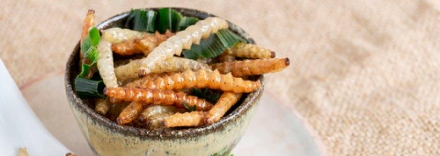 Eiwitten uit meelwormen zijn even goed voor de spieropbouw