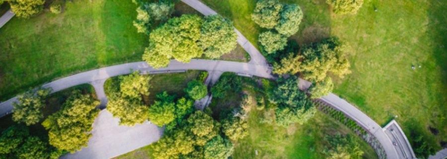 Gezondeten.nl Hoe de natuur de gezondheid van stadsbewoners een boost geeft
