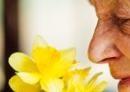 Ouderen ruiken hartige geuren niet meer goed, vrouw ruikt aan bloemen