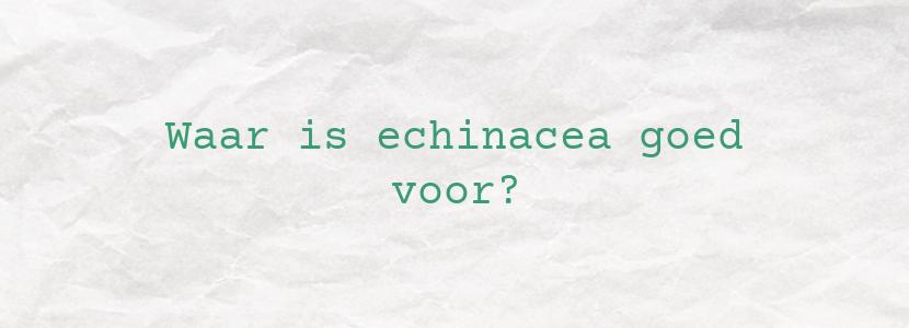 Waar is echinacea goed voor?