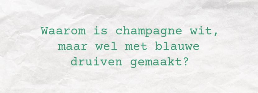 Waarom is champagne wit, maar wel met blauwe druiven gemaakt?