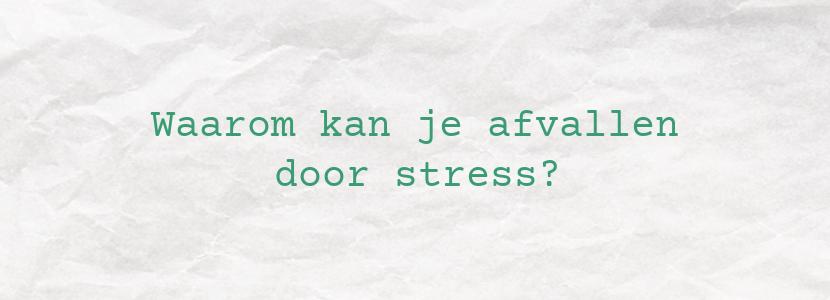 Waarom kan je afvallen door stress?
