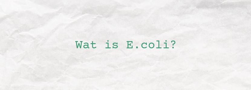 Wat is E.coli?