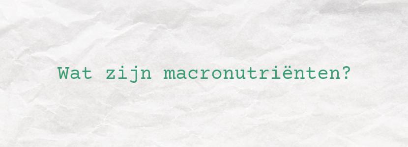 Wat zijn macronutriënten?