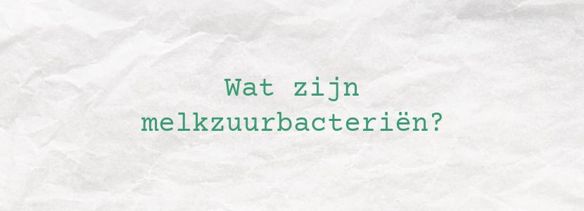 Wat zijn melkzuurbacteriën?