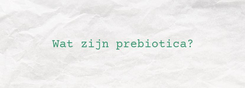 Wat zijn prebiotica?